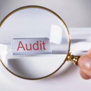 vakansiya, auditor, Sahibkarlıq Subyektləri Məcburi Audit