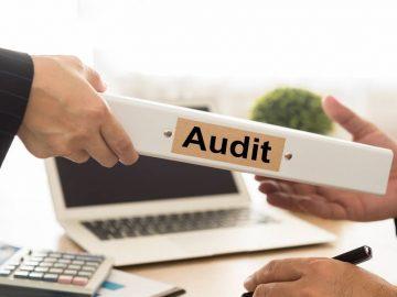 auditor vakansiya